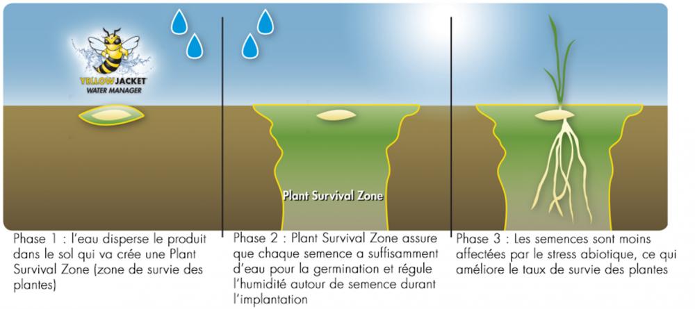 La Plant Survival Zone régule l'humidité autour de la semence